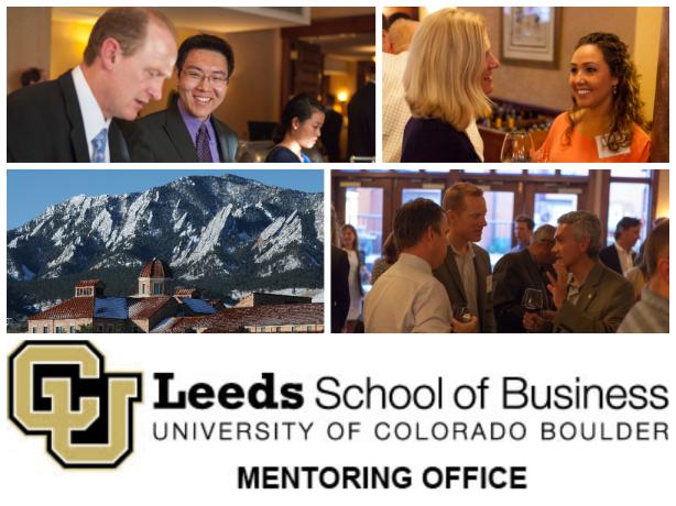 Professional Mentorship Program for Undergraduates